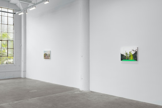 Whitney Bedford Reflections on the Anthropocene, Installation View