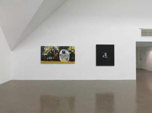 """Shared Eye"" Installation View"