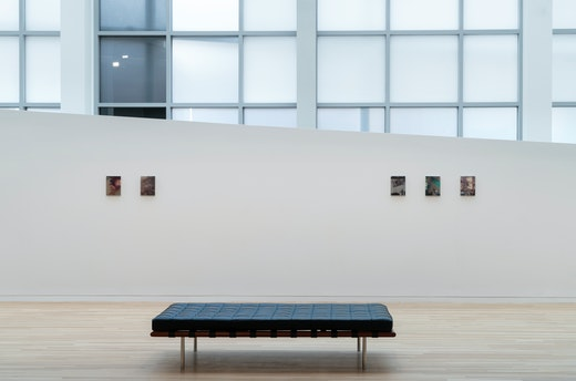 """""""Pain Thing"""" Installation view"""