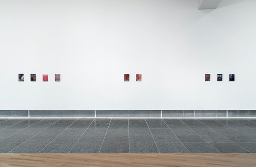 """""""Pain Thing,"""" Installation View"""