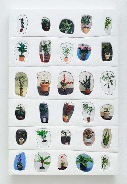"""Sadie Benning """"Plants,"""" 2017"""