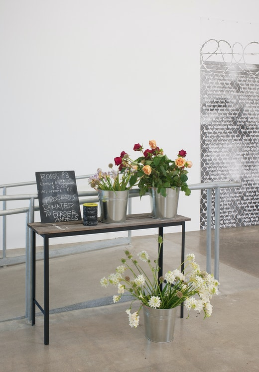 Andrea Bowers: The Political Landscape Installation view