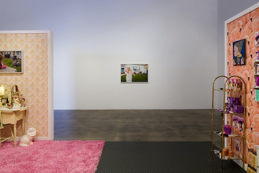 """""""Outside Looking In,"""" Installation view"""