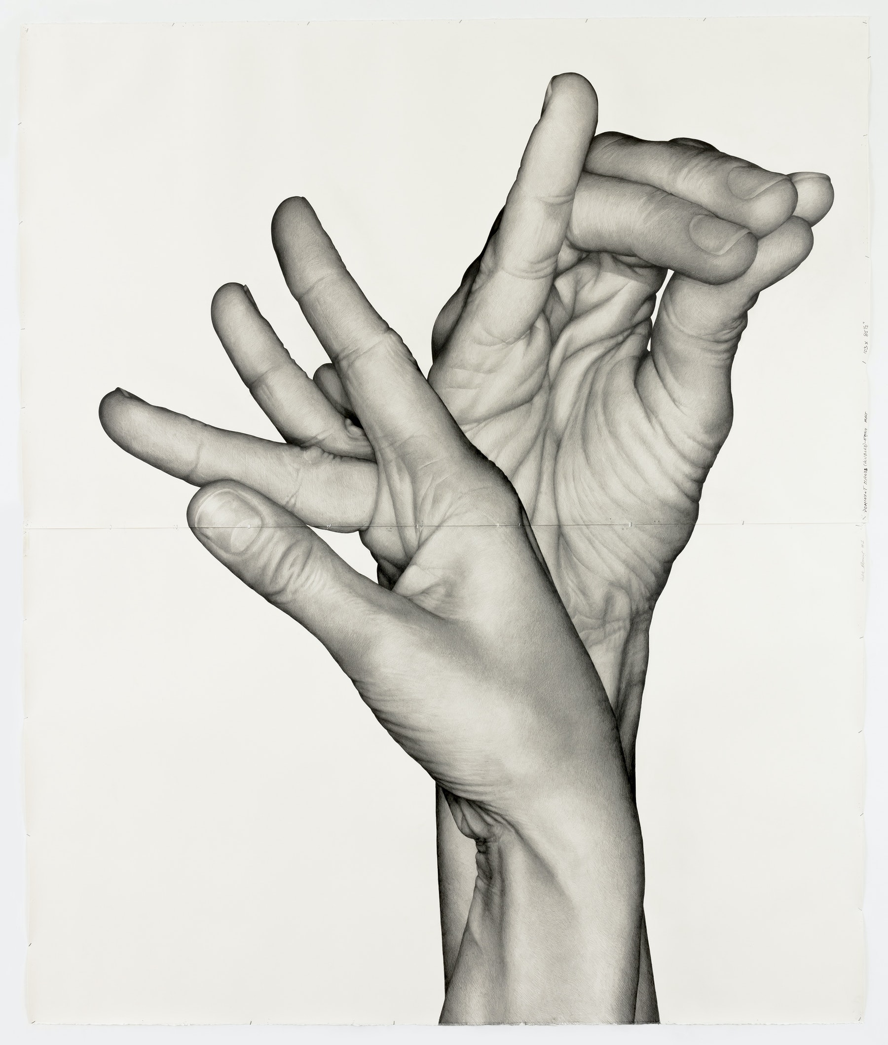 "Karl Haendel ""Double Dominant 1 (Emily Mast),"" 2018 Pencil on paper 103 x 85"" [HxW] (261.62 x 215.9 cm) Inventory #HAE549 Courtesy of the artist and Vielmetter Los Angeles Photo credit: Robert Wedemeyer"