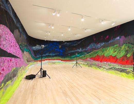 Installation view New Work: Rodney McMillian