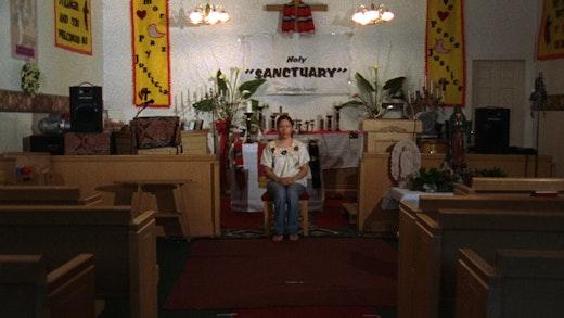 Andrea Bowers Sanctuary