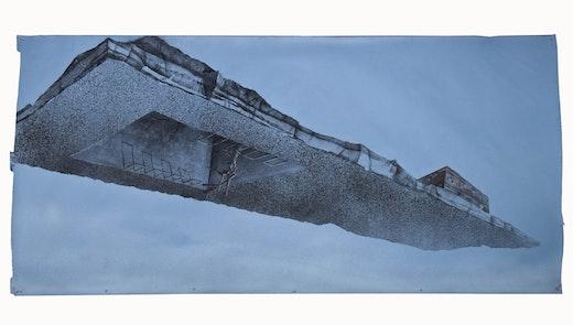 This is an artwork titled Blind Pig #3 by artist Edgar Arceneaux made in 2010