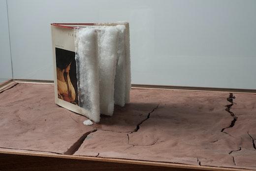 This is an artwork titled Orpheum Returns- Fires Creation by artist Edgar Arceneaux made in 2010