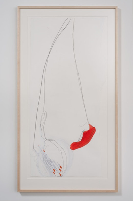 This is an artwork titled More Swords of Damocies by artist Olga Koumoundouros made in 2011