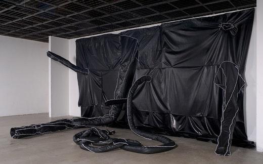 Rodney McMillian Whitney Biennial 2008 Installation View