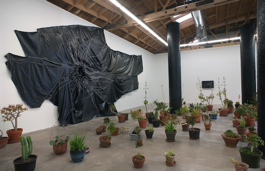 This is an artwork titled Installation View by artist Rodney McMillian made in 2010