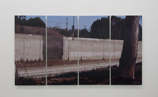 This is an artwork titled What if walls made things greener on the other side? by artist Ruben Ochoa made in 2007