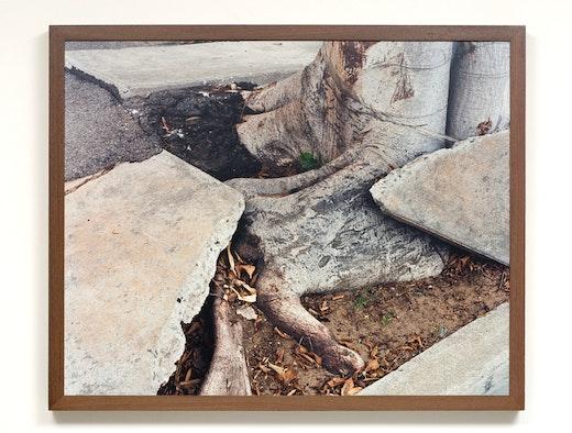 This is an artwork titled Still Tripping, 90033 by artist Ruben Ochoa made in 2007