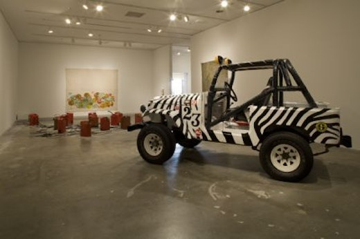 This is an artwork titled Installation View by artist Sean Duffy made in 2008