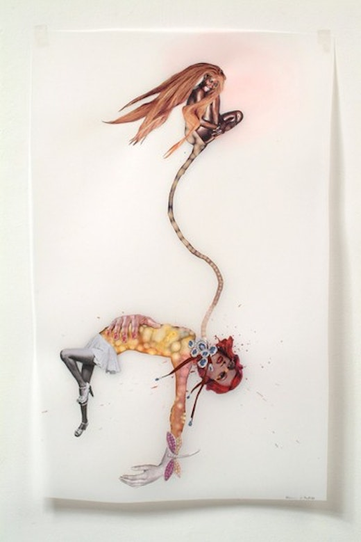 This is an artwork titled the witch-hunt by artist Wangechi Mutu made in 2003