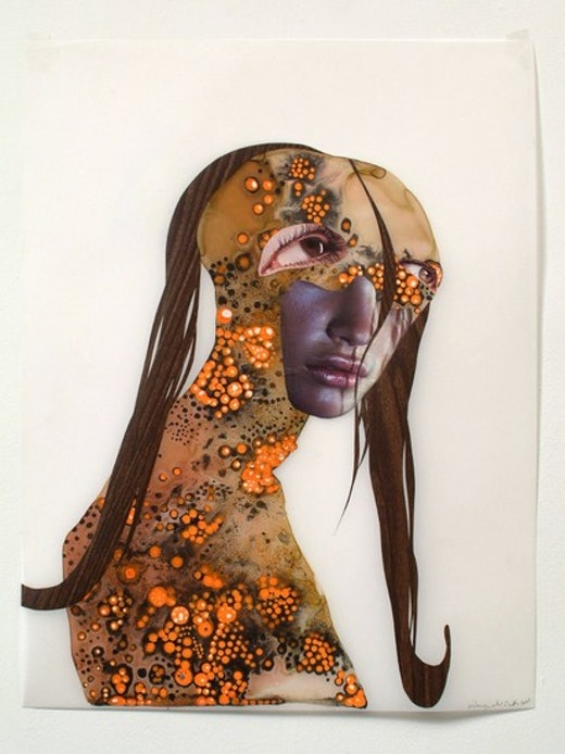 This is an artwork titled Untitled (classic profiles series) by artist Wangechi Mutu made in 2003