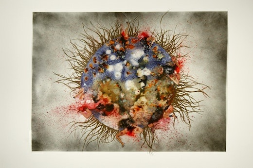 This is an artwork titled Tumor: Contaminated heart by artist Wangechi Mutu made in 2005