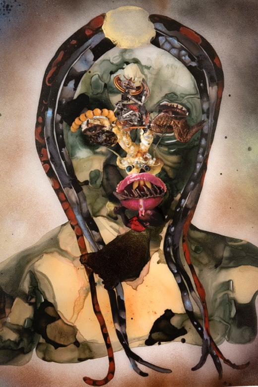 This is an artwork titled Untitled by artist Wangechi Mutu made in 2008