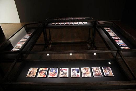Wangechi Mutu Installation view, Photography courtesy the Art Gallery of Ontario