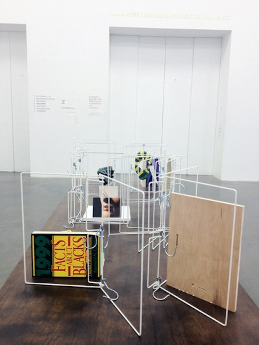 This is an artwork titled The Ungovernables, New Museum Triennial by artist Dave McKenzie made in 2012