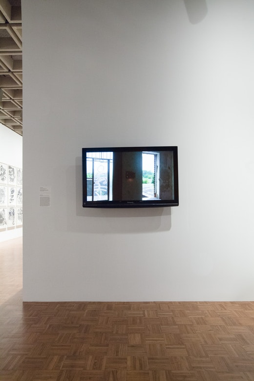 Dave McKenzie 2014 Whitney Biennial: Dave Mckenzie