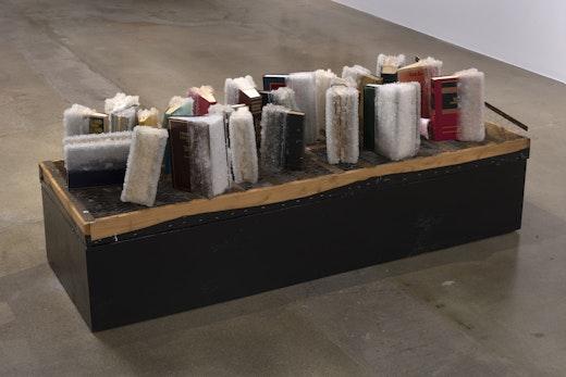 This is an artwork titled False Equivalencies by artist Edgar Arceneaux made in 2017