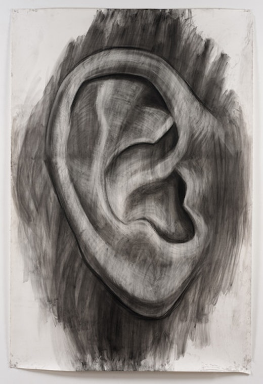 This is an artwork titled Large Ear by artist Karl Haendel made in 2012