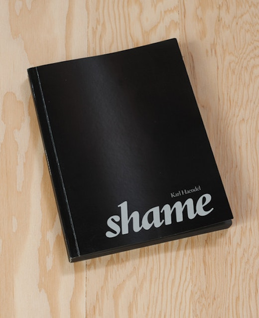 This is an artwork titled Shame by artist Karl Haendel made in 2012
