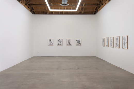Nicola Tyson: Trouble in Happiness Installation view