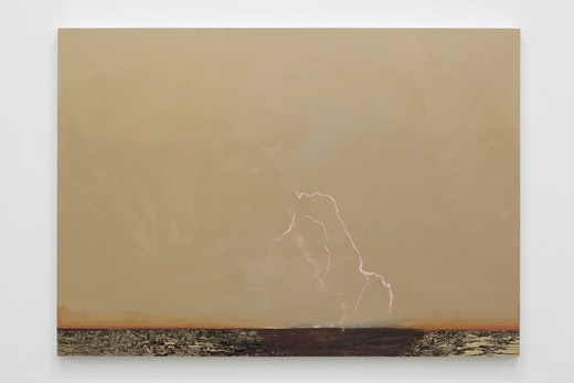 This is an artwork titled Untitled Lightning (Inside/Out) by artist Whitney Bedford made in 2011