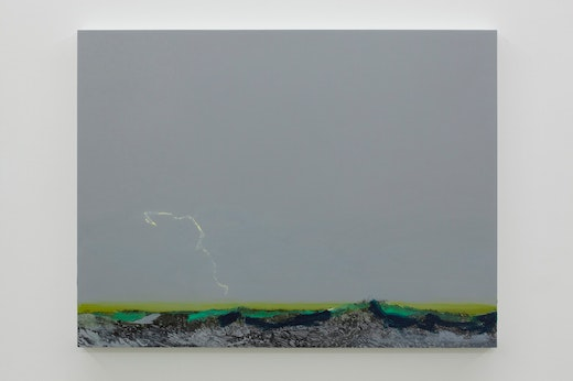 This is an artwork titled Untitled Lightning (Seagris Study) by artist Whitney Bedford made in 2011