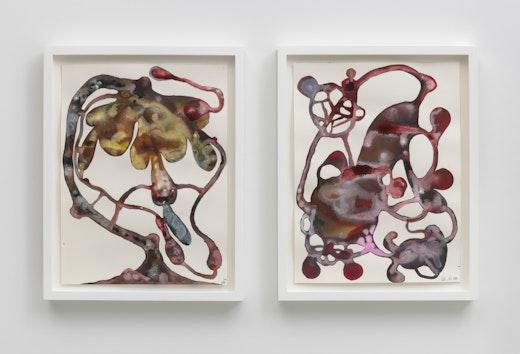 This is an artwork titled Metastasis I and Metastasis II by artist Wangechi Mutu made in 2016