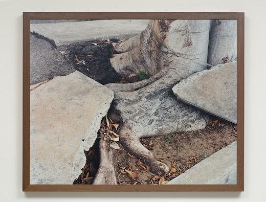 """Ruben Ochoa """"Still Tripping, 90033,"""" 2007"""