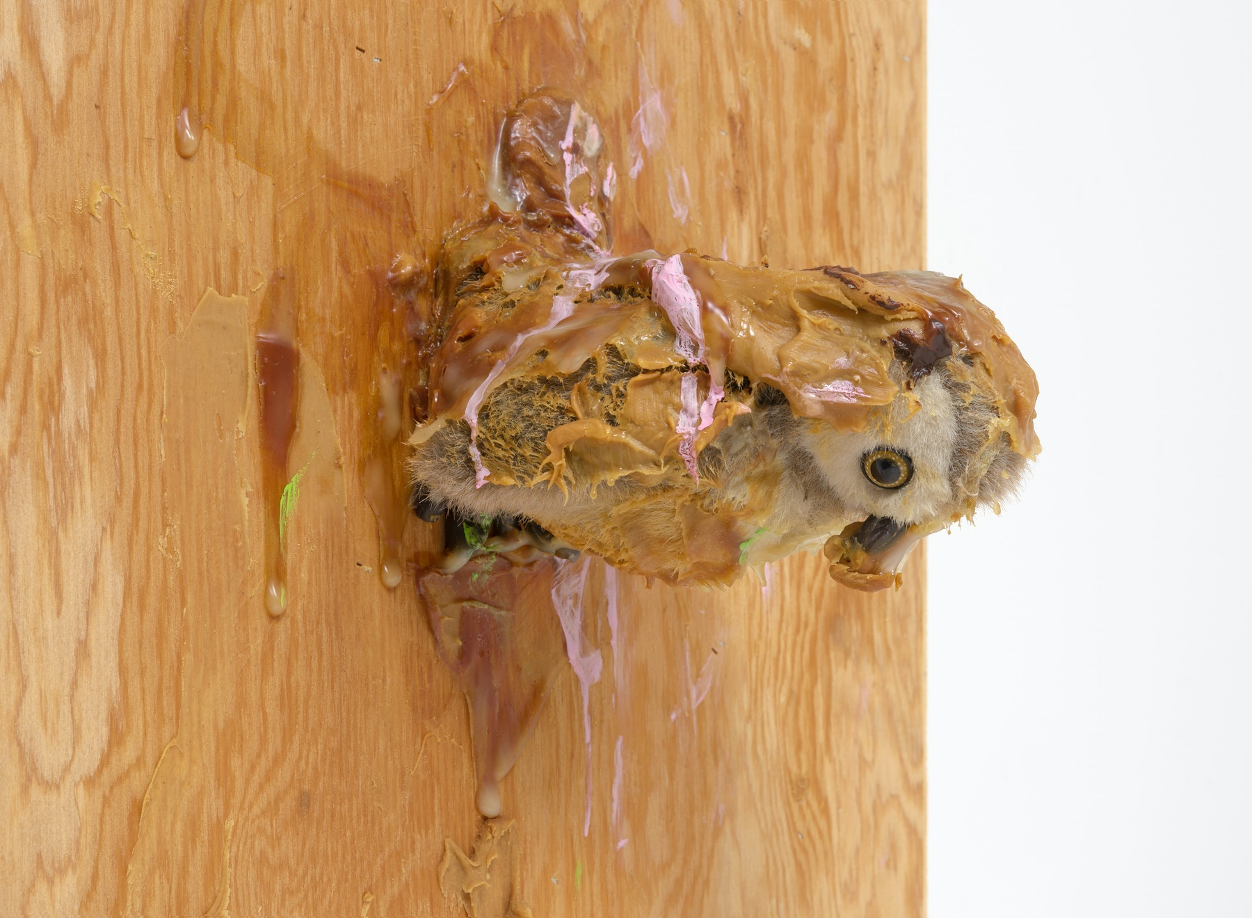 "Pope.L ""Trophy (Owl),"" 2007 Wood, stuffed animal, oil paint, acrylic paint, acrylic medium, peanut butter, screws 34.50"" H x 23.25"" W x 10"" D (87.63 cm H x 59.06 cm W x 25.4 cm D) Inventory #POP138 Courtesy of the Artist and Vielmetter Los Angeles. © Pope.L Photo credit: Robert Wedemeyer"