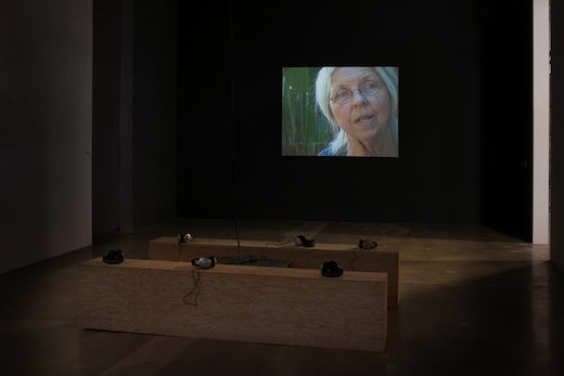 This is an artwork titled Sandra, Installation view by artist Stanya Kahn made in 2010