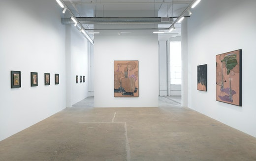 """""""The Lady of Shalott"""" Installation view"""